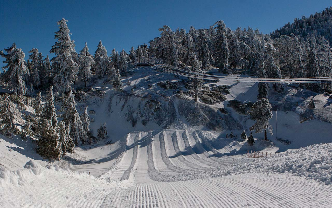Mt Baldy Resort Tubing Park Overview Image